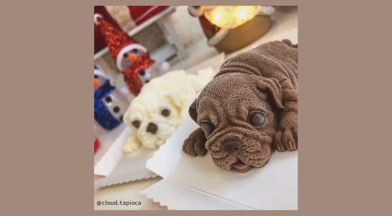 まるで本物の犬!シャーペイケーキが話題の豪徳寺・台湾タピオカ専門店cloud(クラウド)