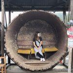 レトロとアートが両方楽しめる!瀬戸内海の島「小豆島」のフォトジェニックスポットまとめ。
