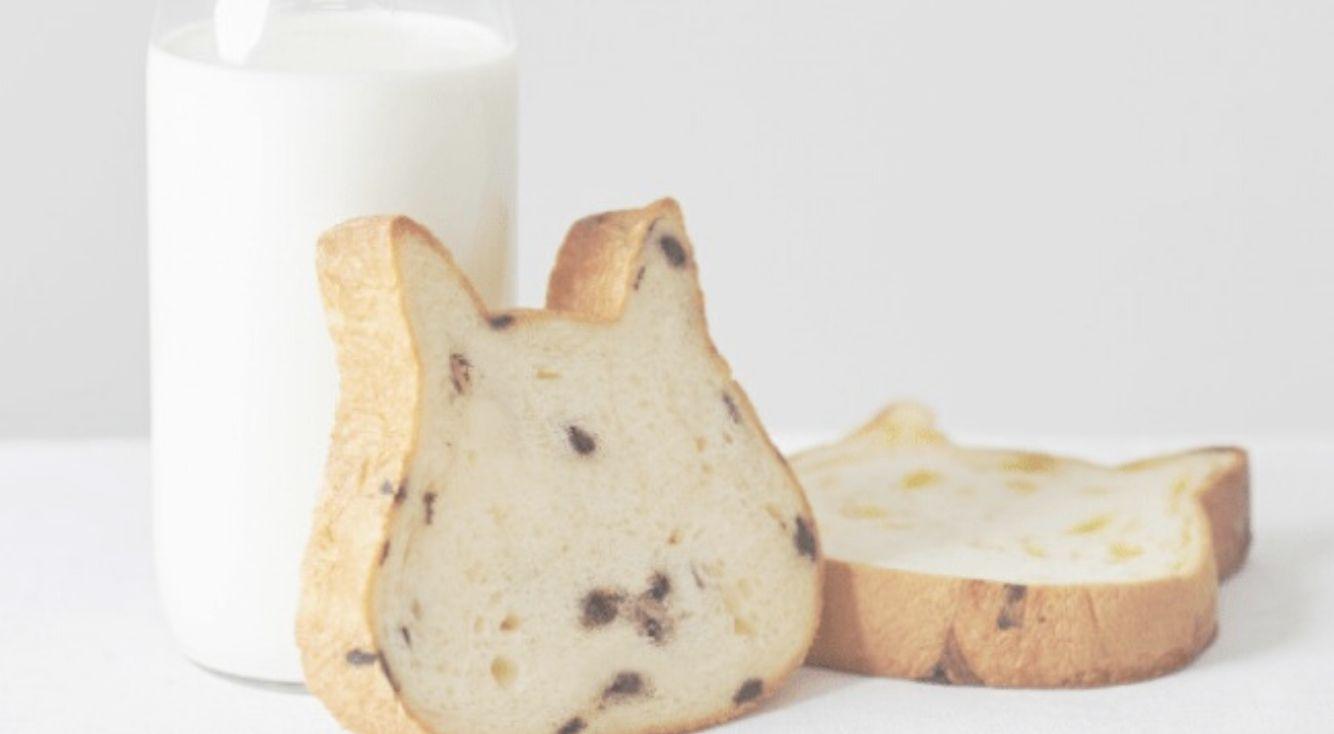 【東京初進出】ねこの形の高級食パン専門店「ねこねこ食パン」が都内にオープン♥インスタ投稿キャンペーンも開催