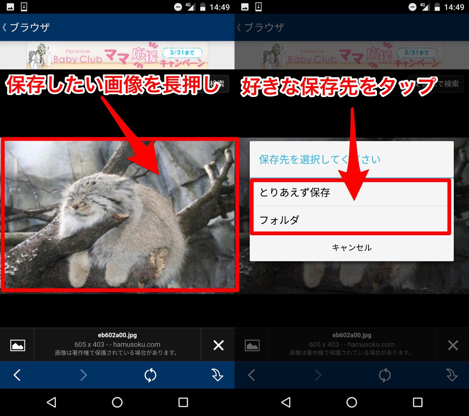 検索結果に表示された画像を長押しして保存先を選択して保存する