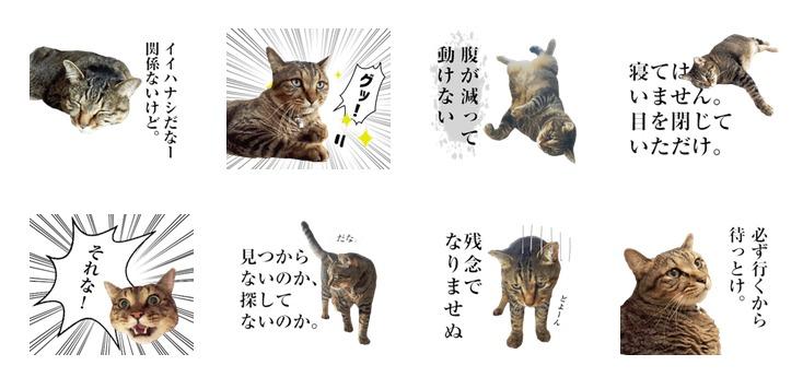 猫田風太郎スタンプ