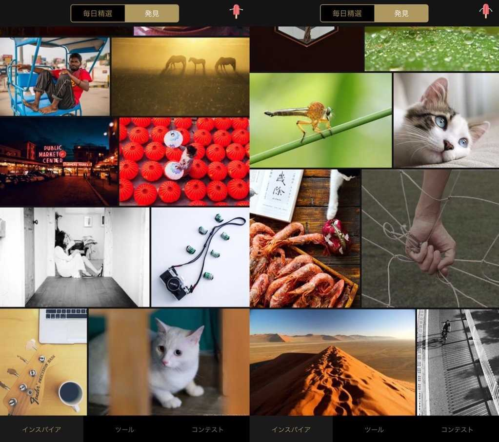 fotorで加工した画像