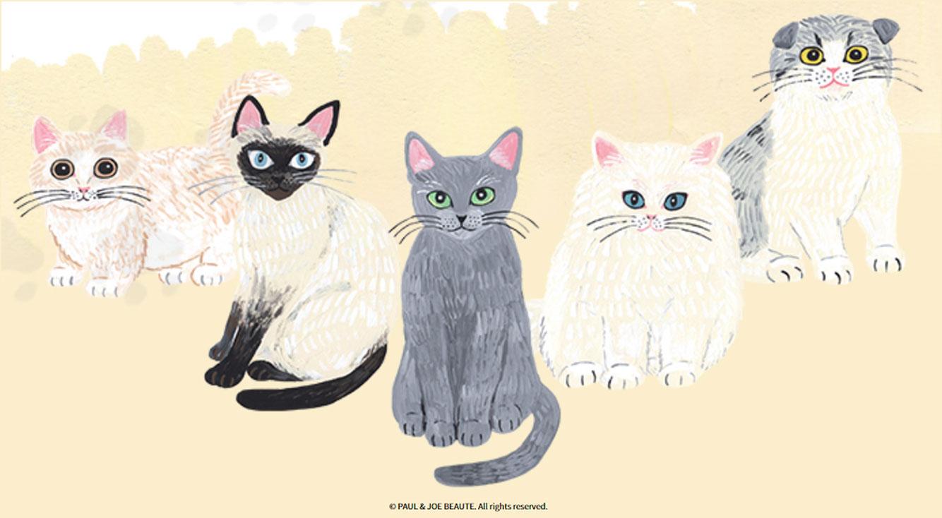 ポール&ジョーの大人気ファンデーションプライマーのサンプルクーポンがもらえる♡猫の日に【PAUL&JOE 猫診断】はいかが?