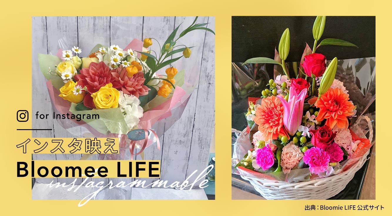 毎月かわいいお花が届く定期便サービス【Bloomee LIFE】