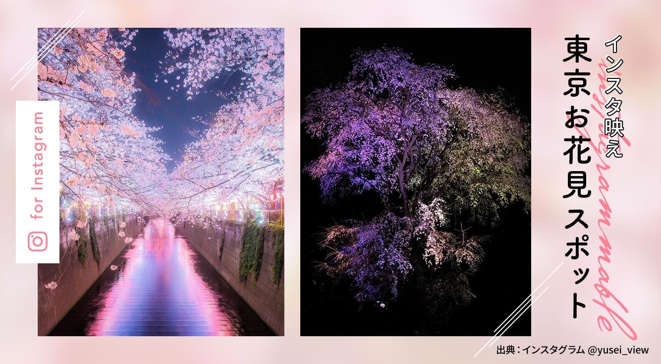 インスタ映え!おすすめの「東京お花見スポット」5選
