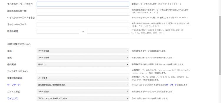 検索オプションサイト
