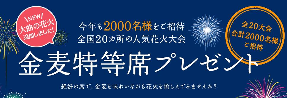 050707hanabi_SS005