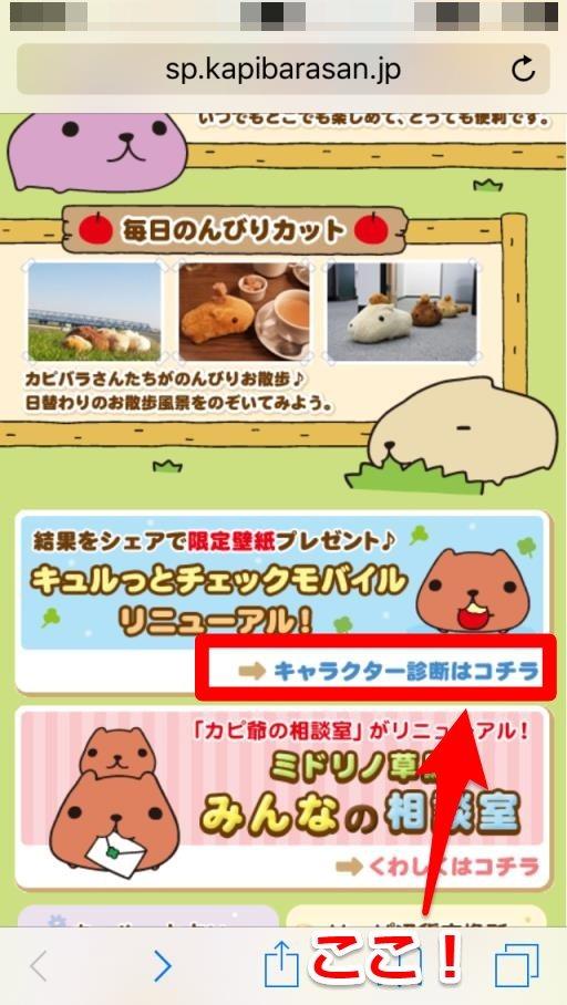 kapibara-07