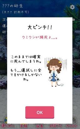 umiushi-02