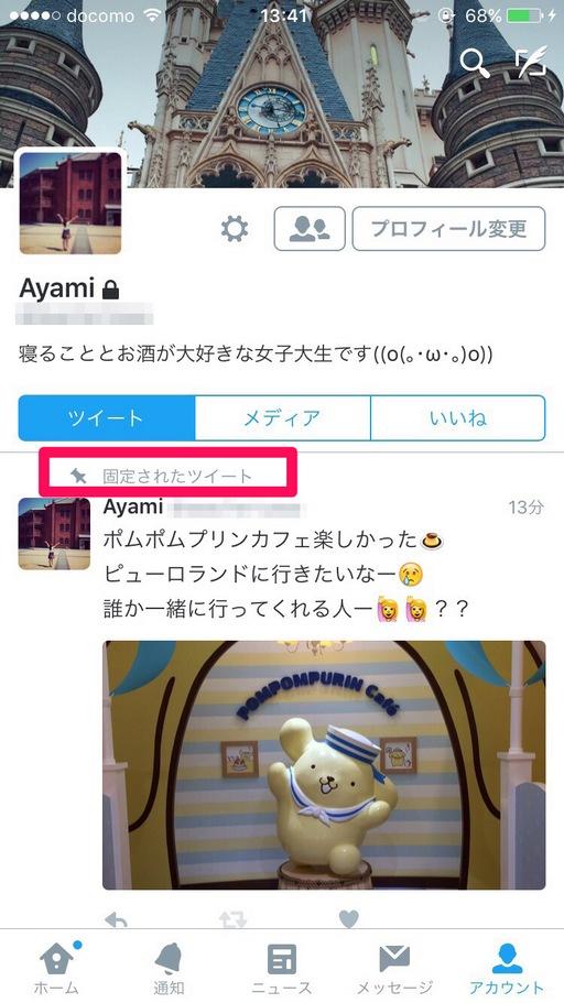 Twitter-kotei-01