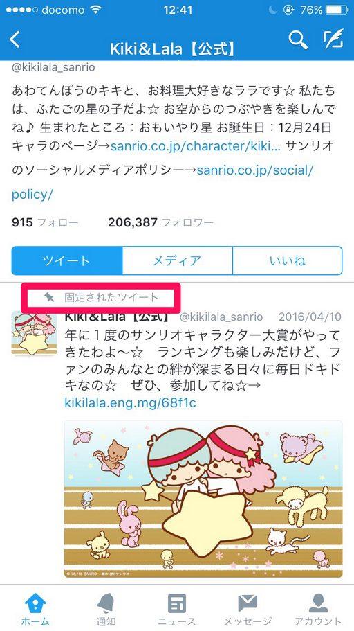 Twitter-kotei-03
