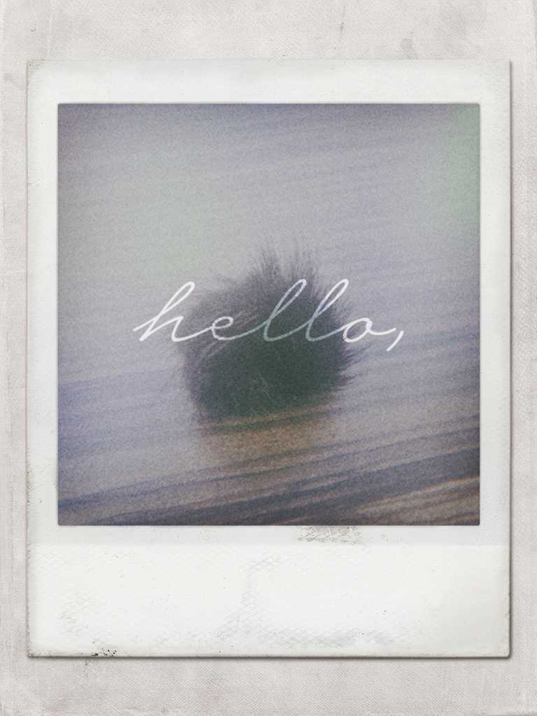 snow-polaroid