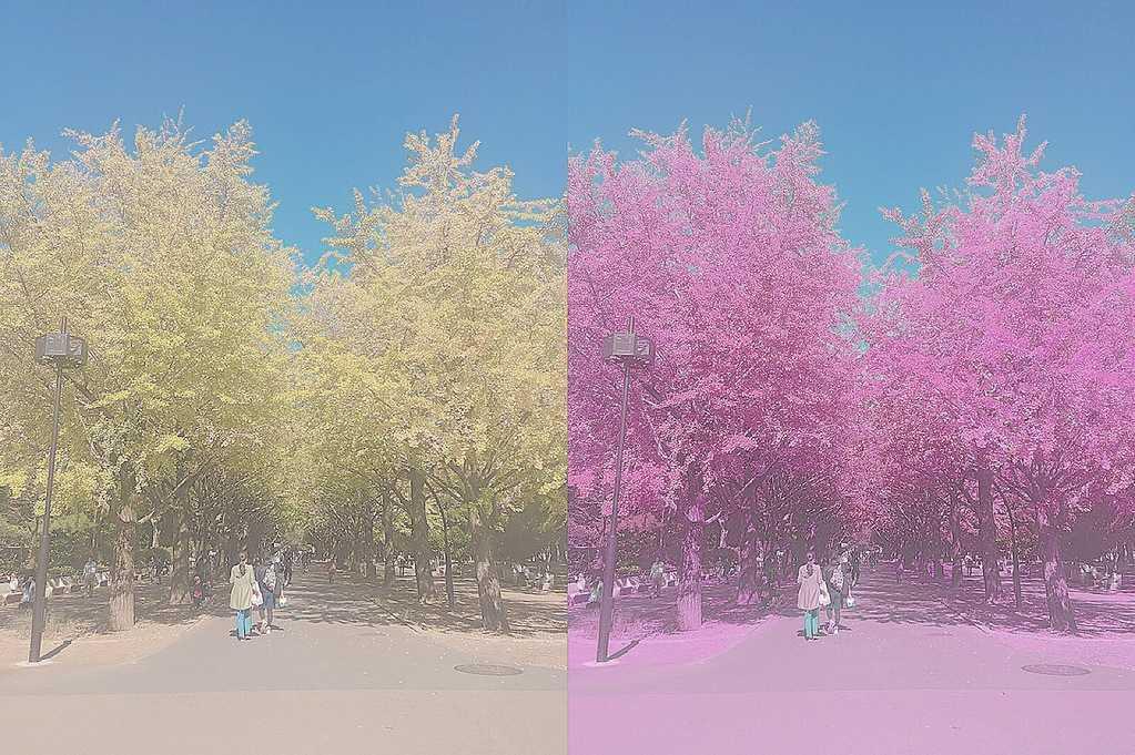 picsart-color-change