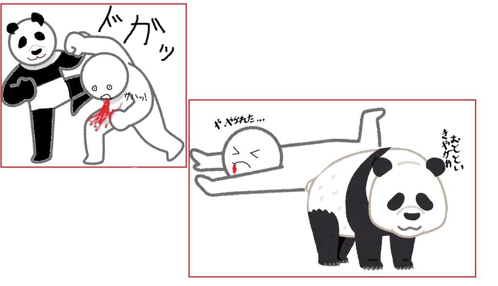 TEKKENのパンダの一撃は重い
