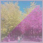 超カンタン!加工アプリ「PicsArt」を使って画像・写真の色を変える方法を紹介!