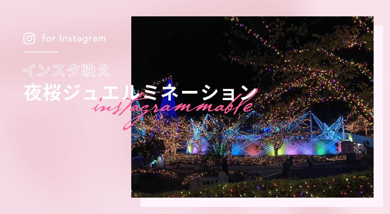 夜桜ジュエルミネーション開催決定!よみうりランドでまるごと1日楽しんじゃおう♡