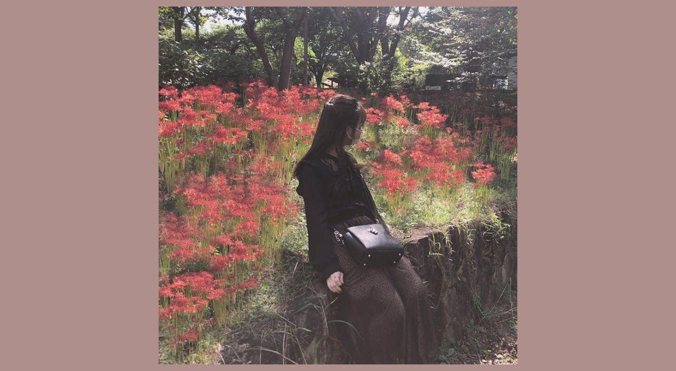 がっかりお花畑は「お花を増やす加工」で解決!PicsArtのクローン機能で簡単!見栄えのいい写真に早変わり♪
