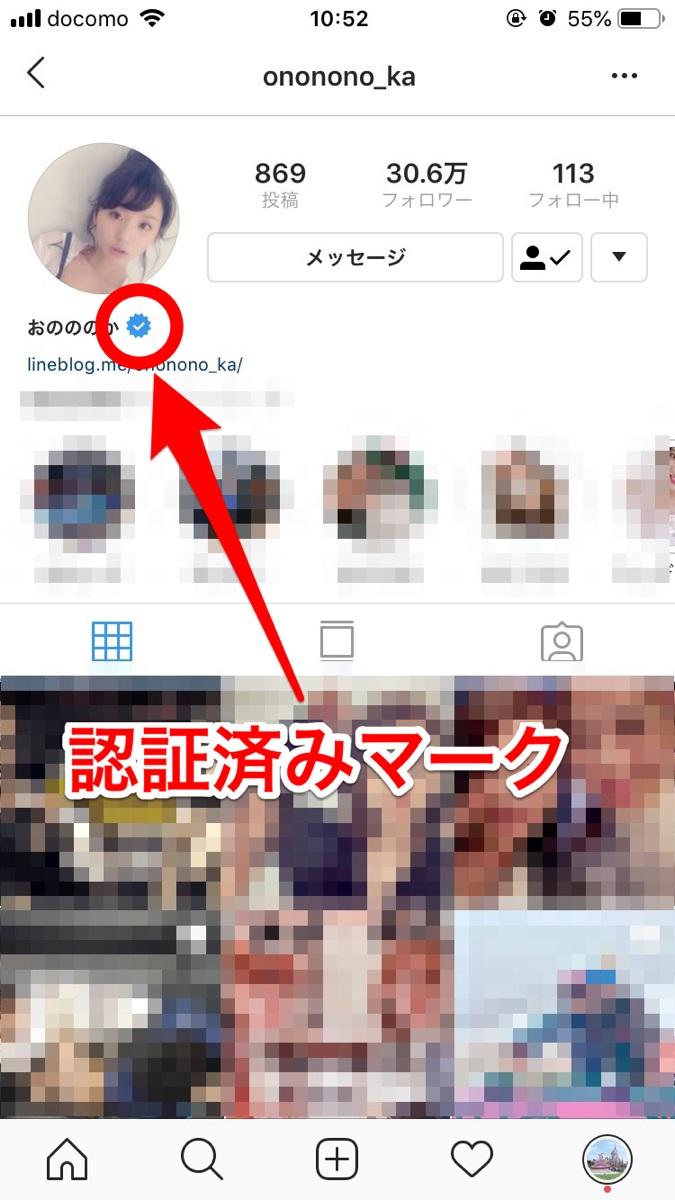 instagram-racoon