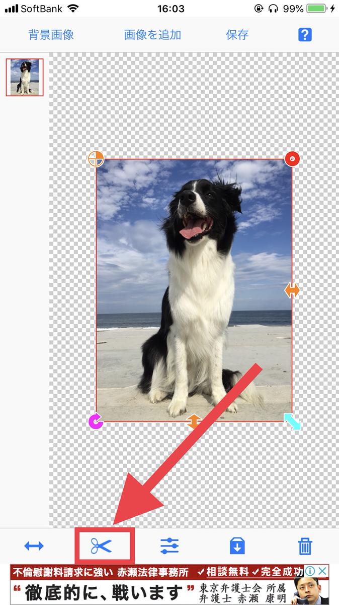 background trasparent