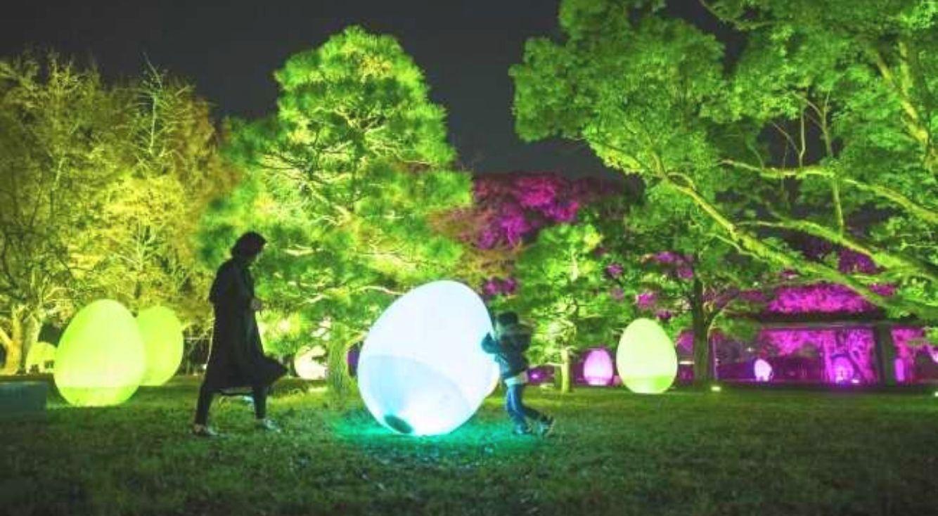 「チームラボ 福岡城跡 光の祭 2019-2020」11月29日から開催。今年も夜の福岡城跡がインタラクティブな光のアート空間に