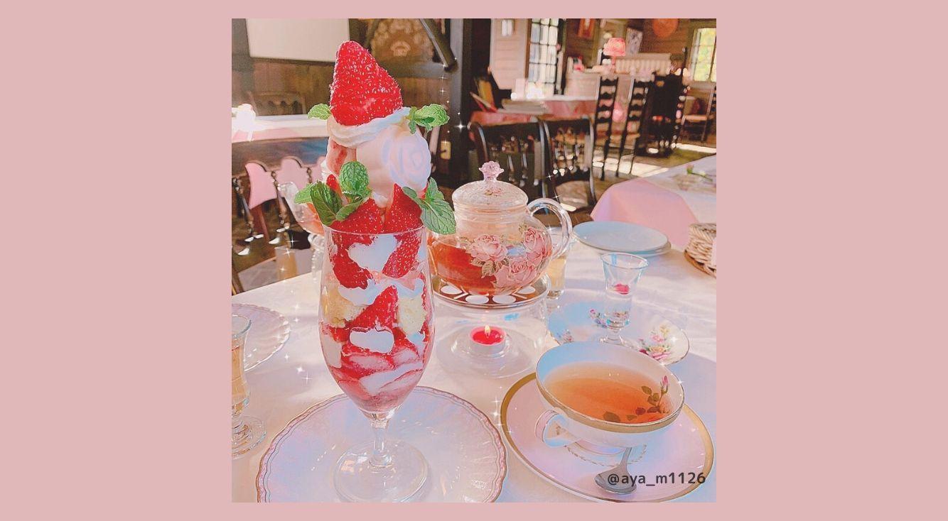 ローズガーデンも楽しめる♡名古屋の【カフェRosa 薔薇館(ローザばらやかた)】