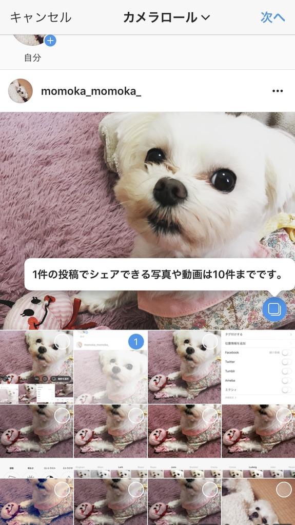 Instagram(インスタグラム)での画像や動画の複数投稿