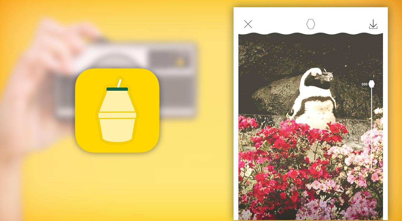 韓国好きは必見!バナナウユがカメラアプリになった?!かわいいフィルター盛りだくさん♡韓国発の無料カメラアプリ「단지캠(タンジカム)」。