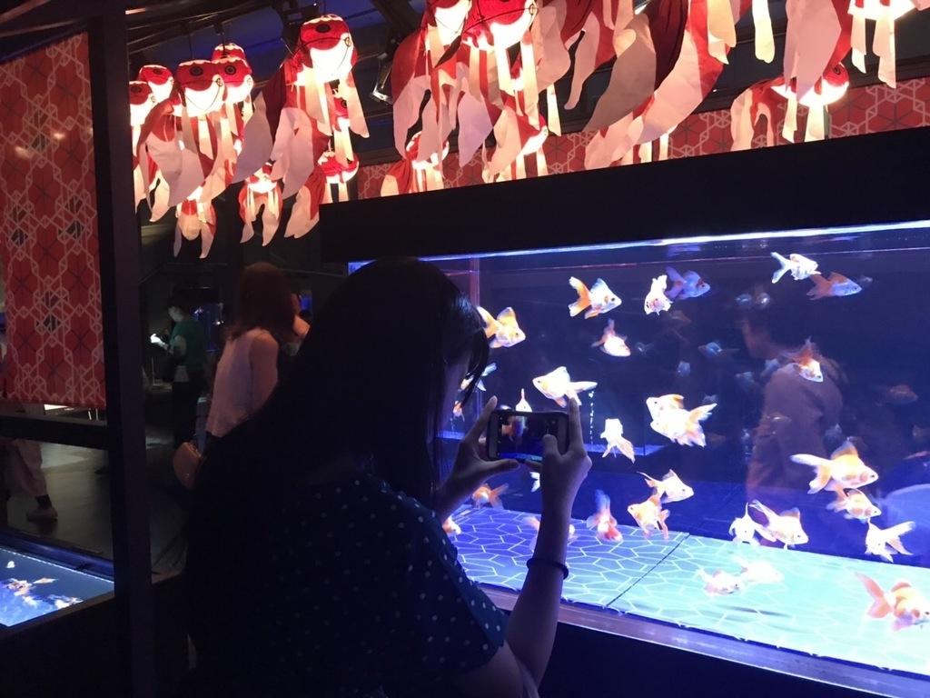 Aquarium-Tokyo