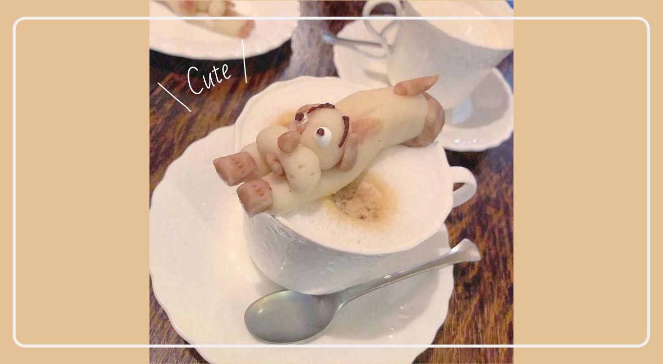 ワンちゃんのスイーツをドリンクに浮かべて♡おしゃれな cafe Terrasse & Restaurant.【J-COOK(ジェイクック)】