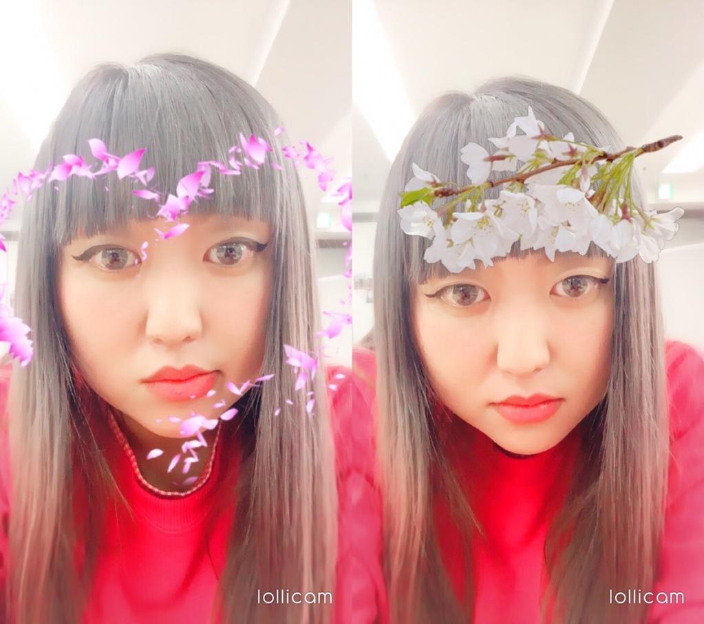 lollicamの春の顔認識スタンプ