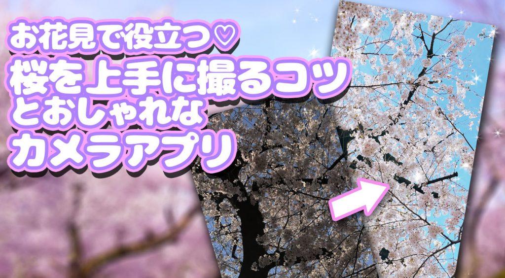 お花見で役立つ♡桜を上手に撮るコツとおしゃれに写るカメラアプリ!