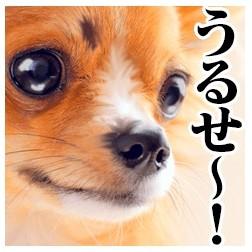衝撃!可愛いのに毒舌な犬スタンプ