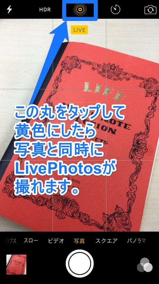 Apple公式のLivePhotosのイメージ写真