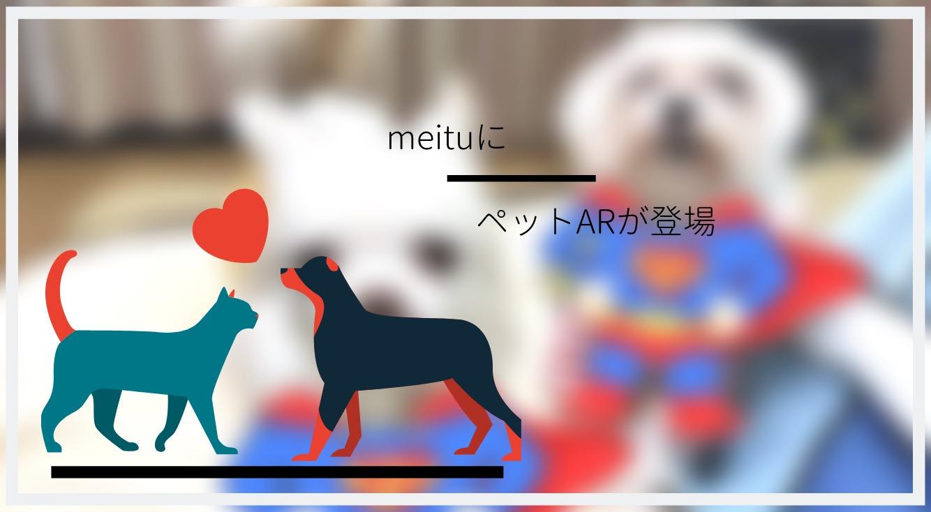 【Meitu】ペットも顔認証してかわいく盛れちゃう✨🐶🐱【ペットAR】で遊ぼう!
