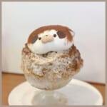 まだまだかき氷がアツい!愛知県にあるPatisserie fraise(パティスリーフレーズ) を紹介!