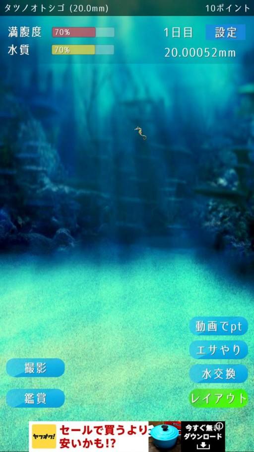 tatsuno-otoshigo-02